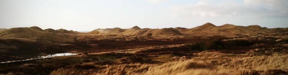 Insel-Leben – Urlaub und Leben auf Amrum, Sylt und Deiner Liebling-Insel